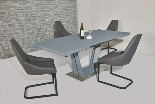 Matt Grey glass dining table and 8 grey chairs